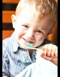 Bambus Tandbørster til Børn, 2 stk bløde børster